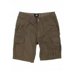 Dickies New York Shorts...