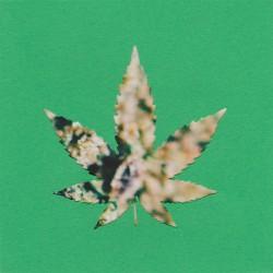 "Greengo - ""Dabstep"" CD"